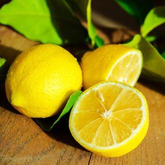 Citron jaune non traité à la pièce