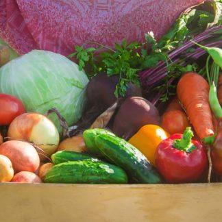 Légumes frais de saison